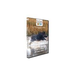SEA256 - DVD LA BETE NOIRE DU VACCARES